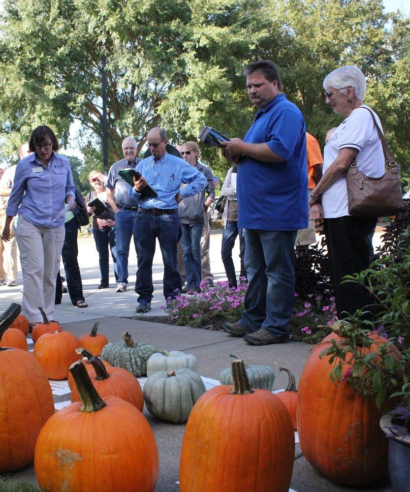 Visitors viewing pumpkins at Pumpkin Field Day Event